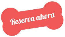 https://residenciacaninamicasa.com/wp-content/uploads/2019/07/text_01.png
